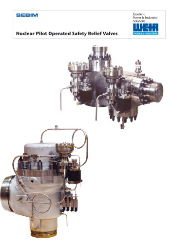 Sebim Nuclear Piolot operated Safety Relief Valves