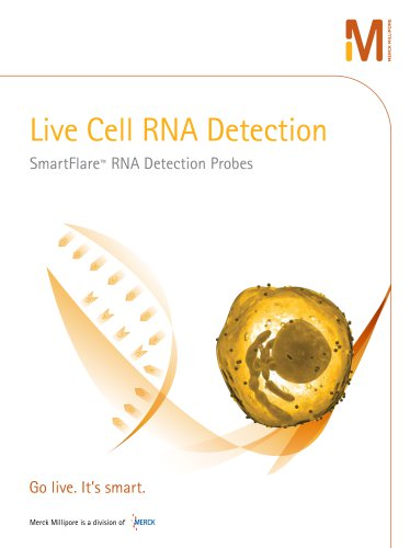 Live Cell RNA Detection