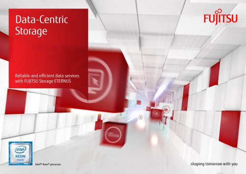 Data-Centric Storage