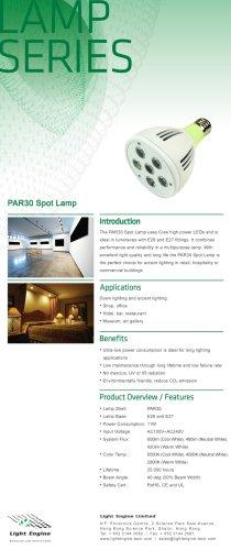 PAR30 Spot Lamp