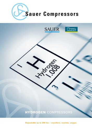 Sauer Compressors for Hydrogen Solutions