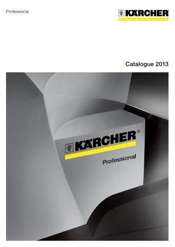 2013 professional catalogue