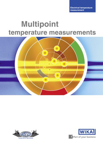 Multipoint temperature measurements