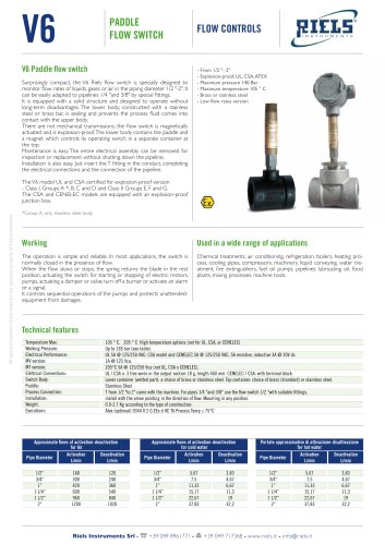 V6 Paddle Flow Switch Riels® Instruments