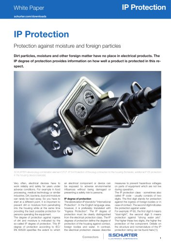 White Paper IP Protection