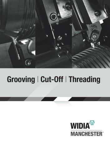 tool-holder for V-design insert