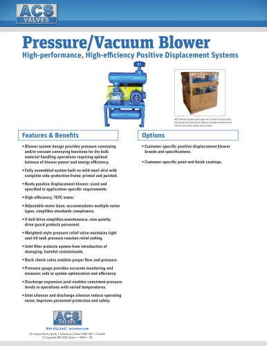 Pressure/Vacuum Blower: High-performance, High-efficiency Positive Displacement Systems
