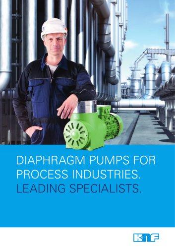 Process Brochure