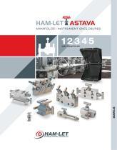 Ham-Let Astava Line of Manifolds